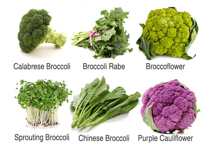 Health Benefits Of Brocoli